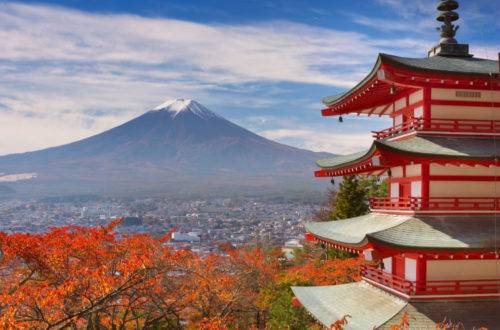 Guia basica de Kioto