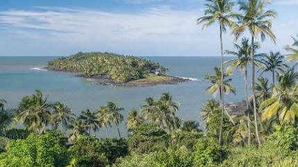 selva amazonica Guayana Francesa