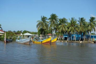 Maravillas naturales de Surinam